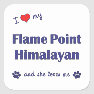 I Love My Flame Point Himalayan (Female Cat) Square Sticker