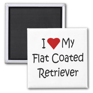 I Love My Flat Coated Retriever Dog Lover Gifts 2 Inch Square Magnet