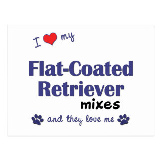 I Love My Flat-Coated Retriever Mixes (Multi Dogs) Postcard