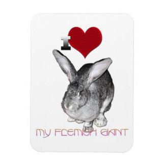 I Love My Flemish Giant Bunny Magnet