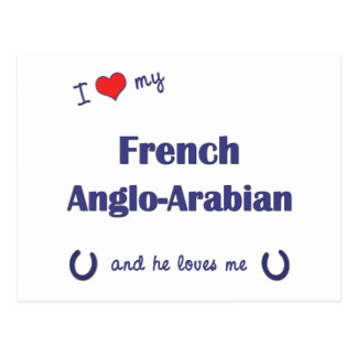 I Love My French Anglo-Arabian (Male Horse) Postcard