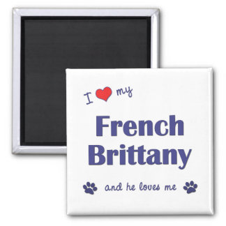 I Love My French Brittany (Male Dog) 2 Inch Square Magnet