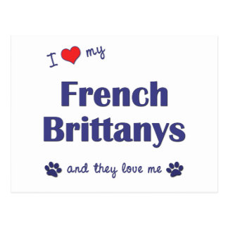 I Love My French Brittanys (Multiple Dogs) Postcard