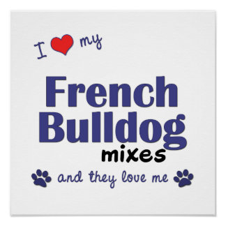 I Love My French Bulldog Mixes (Multi Dogs) Poster
