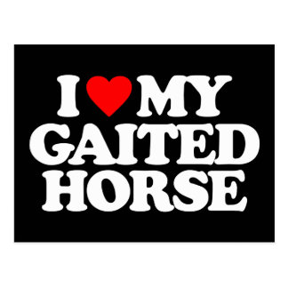 I LOVE MY GAITED HORSE POSTCARDS