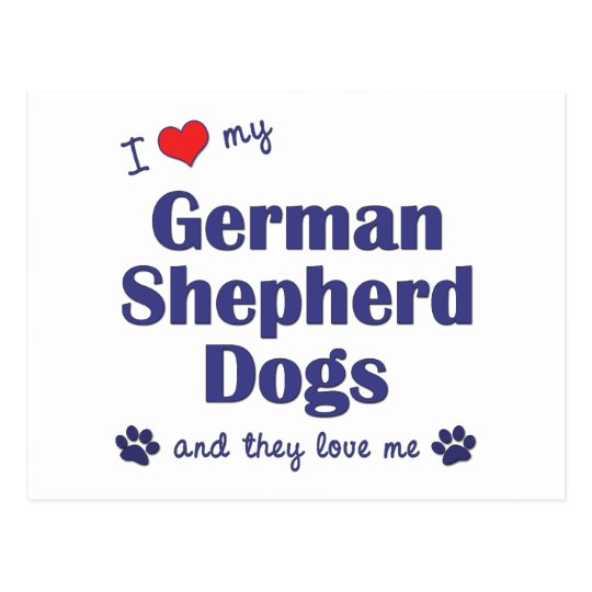 I Love My German Shepherds (Many Dogs) Postcard
