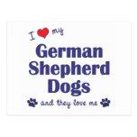I Love My German Shepherds (Many Dogs) Postcards