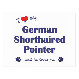 I Love My German Shorthaired Pointer (Male Dog) Postcard