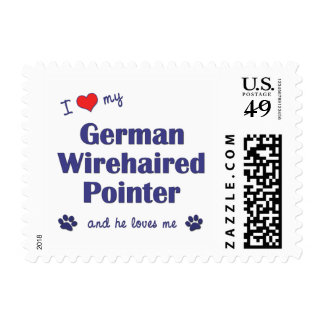 I Love My German Wirehaired Pointer (Male Dog) Postage Stamps
