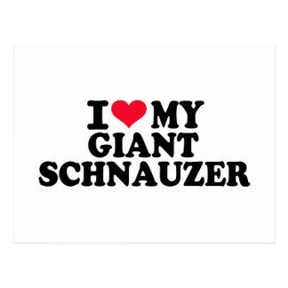 I love my Giant Schnauzer Postcard