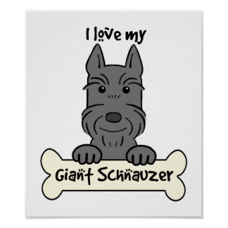 I Love My Giant Schnauzer Poster