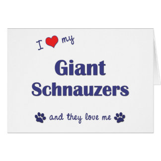 I Love My Giant Schnauzers (Multiple Dogs) Card