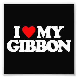 I LOVE MY GIBBON ART PHOTO