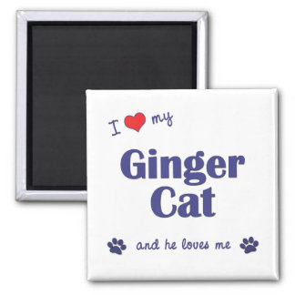 I Love My Ginger Cat (Male Cat) 2 Inch Square Magnet