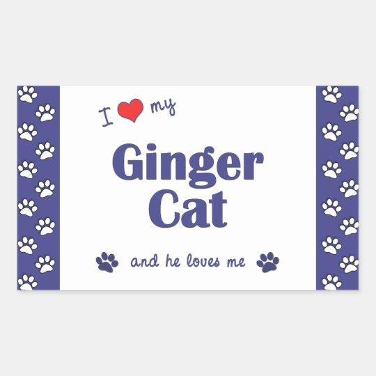 I Love My Ginger Cat (Male Cat) Rectangular Sticker