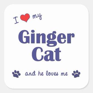 I Love My Ginger Cat (Male Cat) Square Sticker