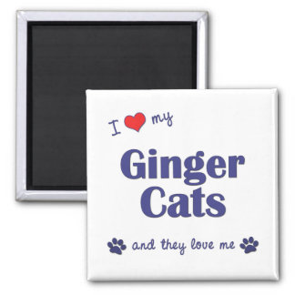 I Love My Ginger Cats (Multiple Cats) 2 Inch Square Magnet
