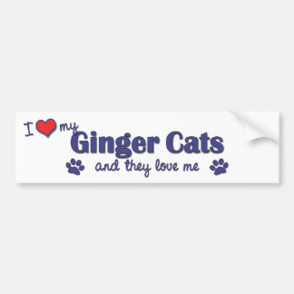 I Love My Ginger Cats (Multiple Cats) Car Bumper Sticker