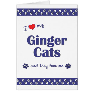 I Love My Ginger Cats (Multiple Cats) Card