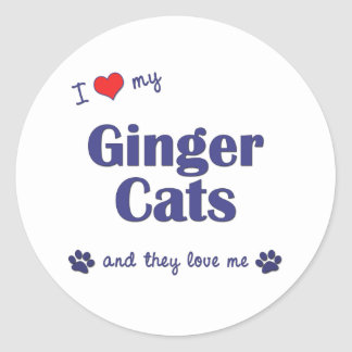 I Love My Ginger Cats (Multiple Cats) Classic Round Sticker