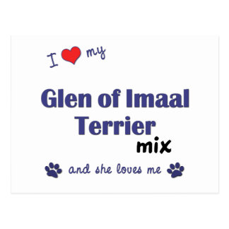 I Love My Glen of Imaal Terrier Mix (Female Dog) Postcard