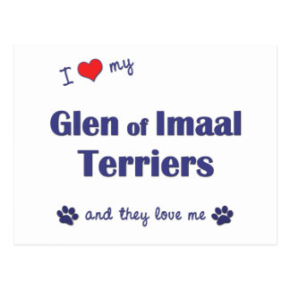 I Love My Glen of Imaal Terriers (Multiple Dogs) Postcard