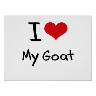I Love My Goat Poster