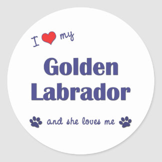 I Love My Golden Labrador (Female Dog) Classic Round Sticker