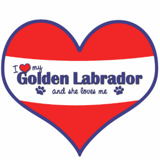 I Love My Golden Labrador (Female Dog) Cutout