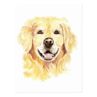 I Love my Golden Retriever, Dog, Pet Postcard