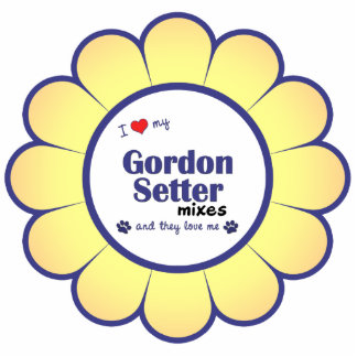 I Love My Gordon Setter Mixes (Multiple Dogs) Statuette