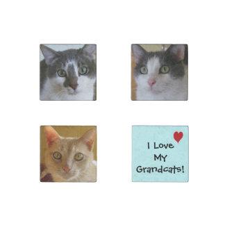 I Love My Grandcats! Stone Magnet