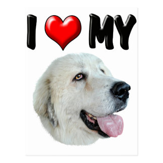 I Love My Great Pyrenees Postcard