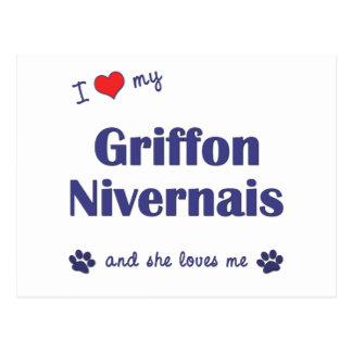 I Love My Griffon Nivernais (Female Dog) Postcard