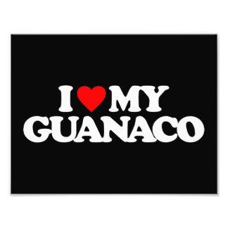 I LOVE MY GUANACO PHOTO ART