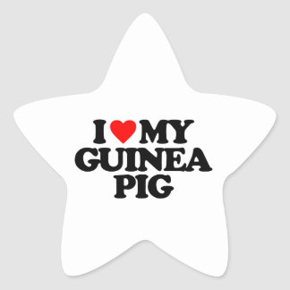 I LOVE MY GUINEA PIG STAR STICKER
