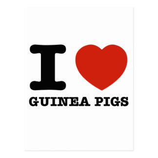 I love my guinea postcard