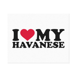 I love my Havanese Stretched Canvas Print