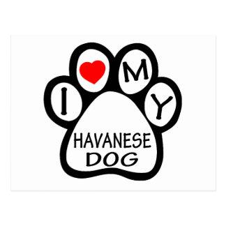 I Love My Havanese Dog Postcard