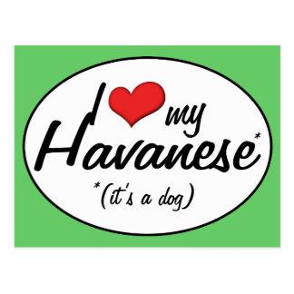 I Love My Havanese (It's a Dog) Postcard