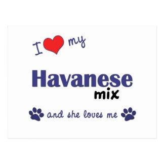 I Love My Havanese Mix (Female Dog) Postcard