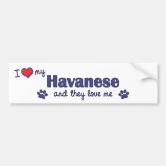 I Love My Havanese (Multiple Dogs) Car Bumper Sticker