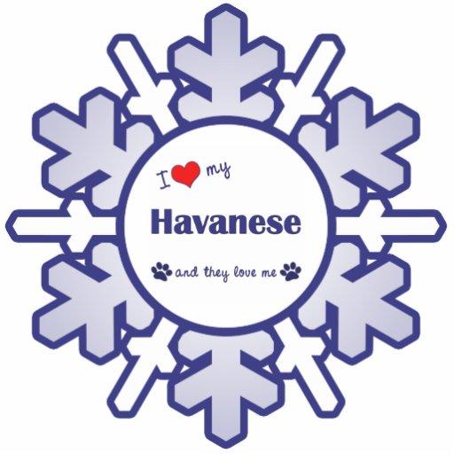 I Love My Havanese (Multiple Dogs) Photo Cutout