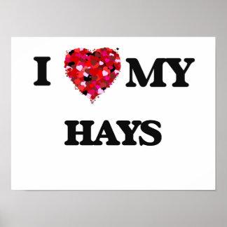 I Love MY Hays Poster