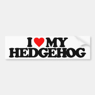 I LOVE MY HEDGEHOG CAR BUMPER STICKER