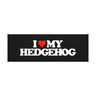 I LOVE MY HEDGEHOG CANVAS PRINT