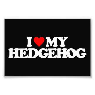 I LOVE MY HEDGEHOG PHOTOGRAPHIC PRINT