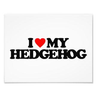 I LOVE MY HEDGEHOG PHOTO PRINT