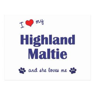 I Love My Highland Maltie (Female Dog) Postcard