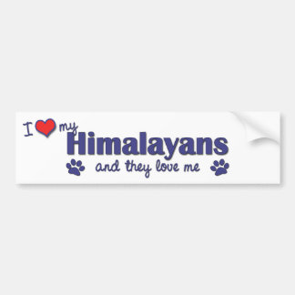 I Love My Himalayans (Multiple Cats) Bumper Sticker